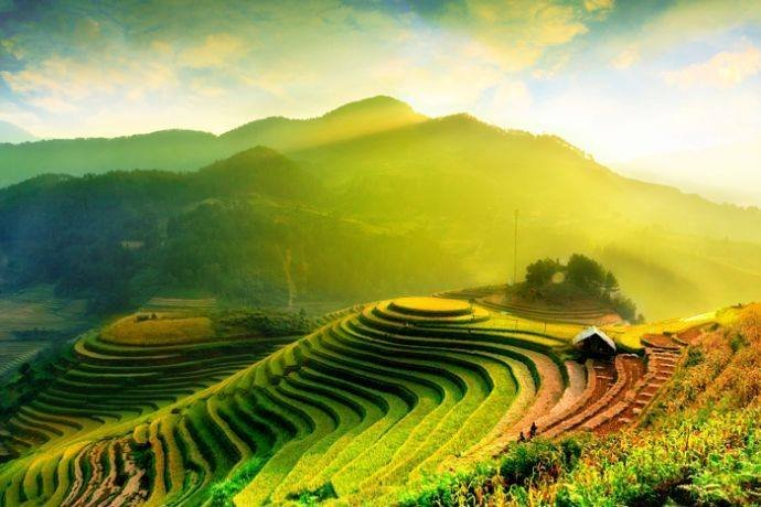 Agence de voyage locale au vietnam (15)